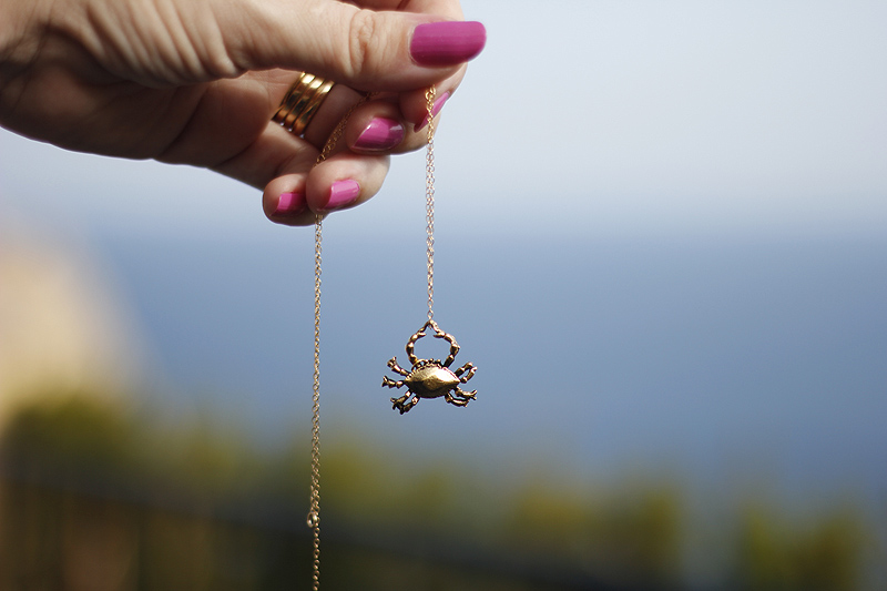 Necklace_crab